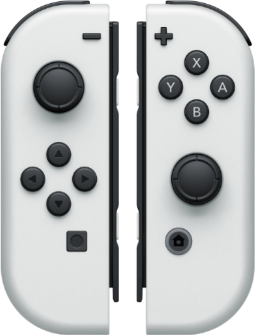 nswitchwhichswitchjoy_con_white.png