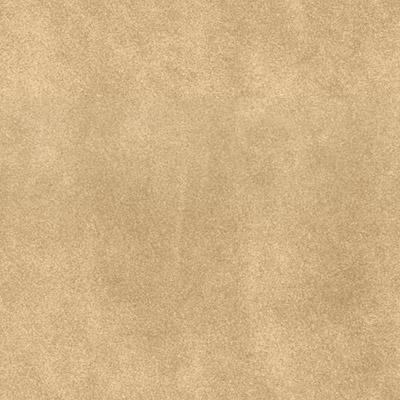 bg-leather