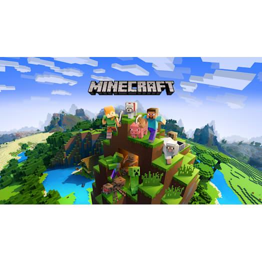 Minecraft image 2