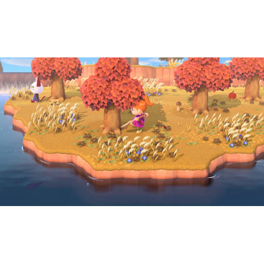 Animal Crossing: New Horizons image 8