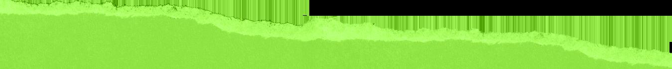 paper-ripped-lightgreen2